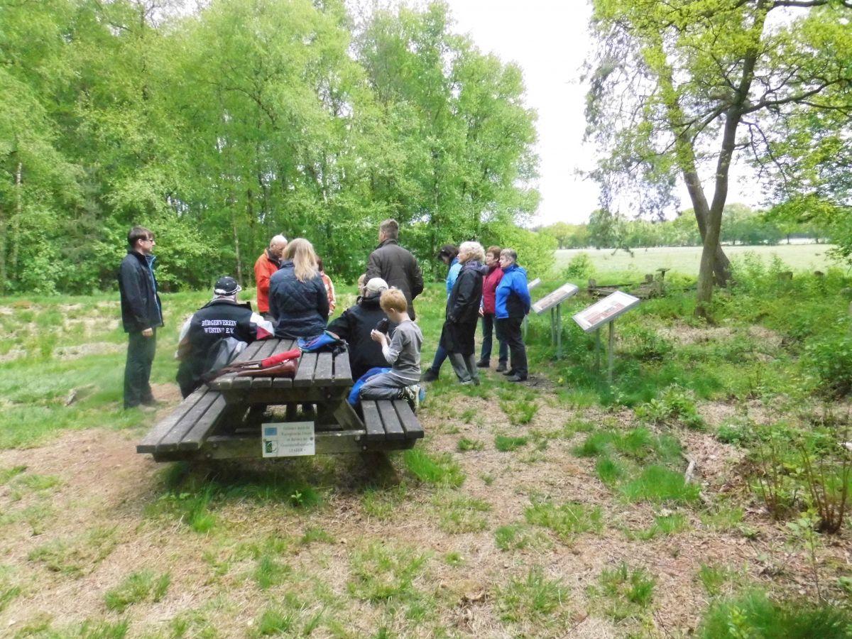 """""""Auf ins Moor!"""" Bürgerverein Wüsting - Die vierte Moorwanderung - Naturroute Holler- und Wittemoor"""