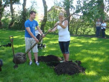 Vier Ehepaare pflanzten bislang einen Baum – Informationen im Huder Standesamt