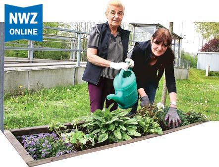 Bürgerverein Wüsting e.V. kümmert sich um Blumenkästen, blüht und grünt am Wüstinger Bahnhof