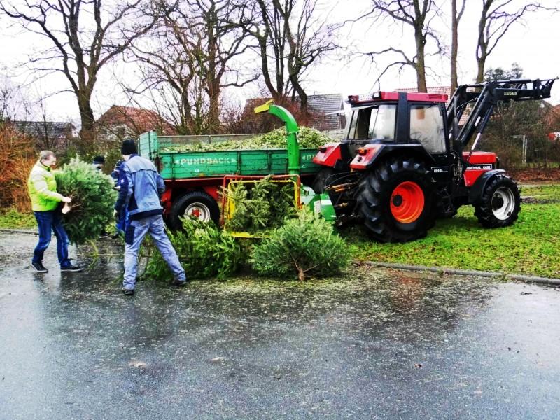 Weihnachtsbaum schreddern in Wüsting am 10.01.2015 vom Bilder Bürgerverein Wüsting e.V.